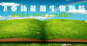 宿州飞亚新能源生物颗粒燃料有限公司